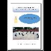 La clase de educación física y las inclusión / Vidovic, Alina Claudia (2019) - application/pdf