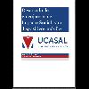 Desarrollo de videojuegos impacto social para... / Puca, Juan Ángel Rodrigo (2019) - application/pdf