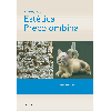 Manual de estética precolombina / Sondereguer, César - URL