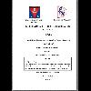 Análisis de Riesgos en una Acería y Prevención de la Siniestralidad / Velazquez, Marcelo Ramon (2018) - application/pdf