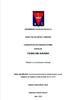 La comunicación interna del Movimiento Juvenil Salesiano en Argentina entre los años 2010 y 2015 / Nieva, Natalia Mariel (2016) - application/pdf